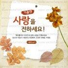 Autumn_2015_20