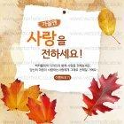 Autumn_2015_25