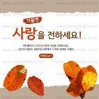 Autumn_2015_26