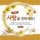 Autumn_2015_27