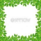 나뭇잎프레임