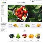 EL862 모던그레이 과일