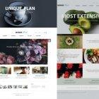 15 홈페이지 메인 2종
