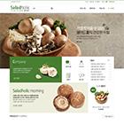 샐러드홀릭♥식품홈페이지