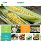 ★바른농산물 할인중