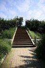 계단 25