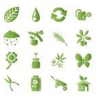 식물 픽토그램 1