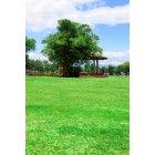 공원 36