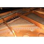 피아노 2
