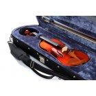 바이올린 100