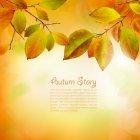 가을이미지 20