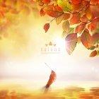 가을이미지 24