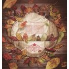 가을배경이미지 81