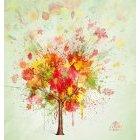 가을이미지 71