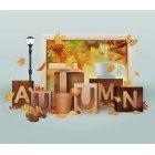 가을이미지 87