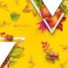 가을이미지 96