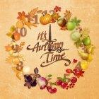 가을이미지 93