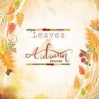 가을이미지 104