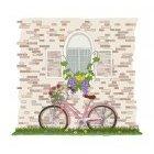 창문과 자전거
