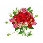 꽃이미지 12