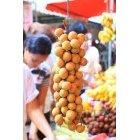 필리핀 과일 6