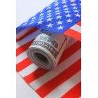 달러와 국기 22