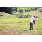 골프선수 15