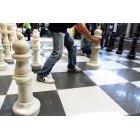 체스 46