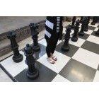 체스 48