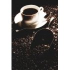 커피 226