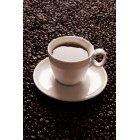 커피 319