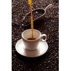 커피 330