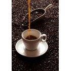 커피 331
