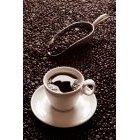 커피 351