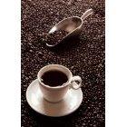 커피 352