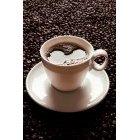 커피 355
