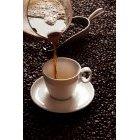 커피 378