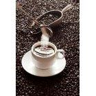 커피 364