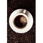 커피 422