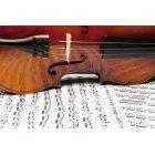바이올린 200