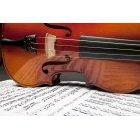 바이올린 199