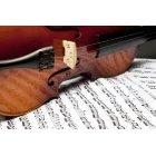 바이올린 196