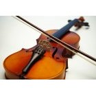 바이올린 191