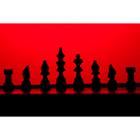 체스 74