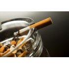 담배 165