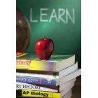 교육 62