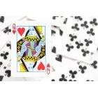 카드 20