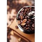 커피 926