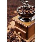 커피 923