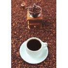 커피 914
